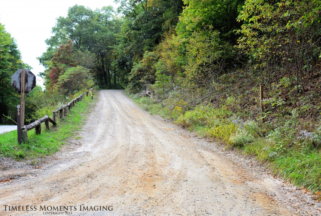 Forestry Service Road 69 is one of many roads still open to public use