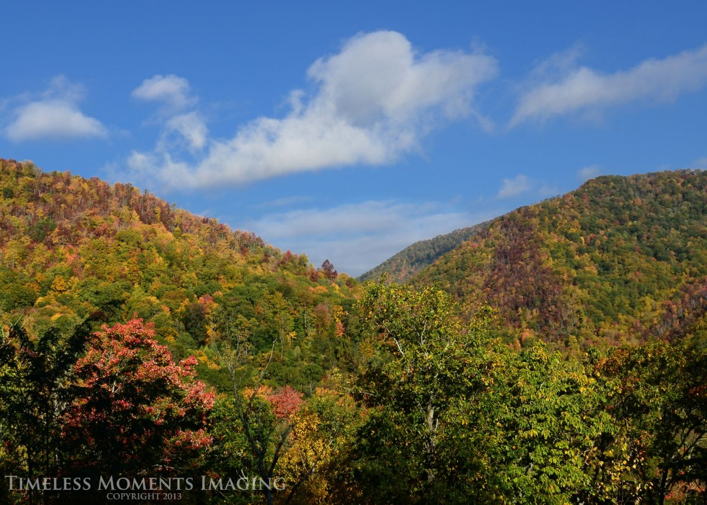 Fall colors paint the mountains of WNC